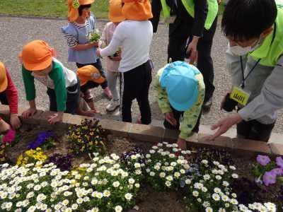 中川口緑地れいんぼーかだん花の植替(地域の方々との協働イベント)を行いました!_d0338682_08395595.jpg