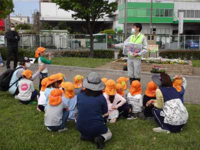 中川口緑地れいんぼーかだん花の植替(地域の方々との協働イベント)を行いました!_d0338682_08421056.jpg