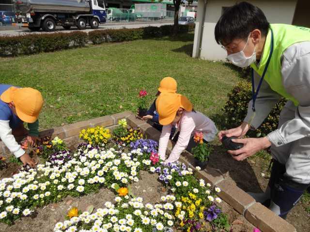 中川口緑地れいんぼーかだん花の植替(地域の方々との協働イベント)を行いました!_d0338682_08434584.jpg