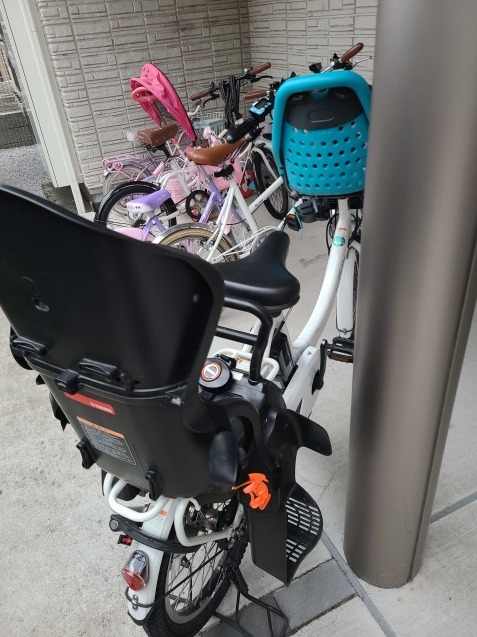 初の電動自転車_c0124528_06551899.jpg