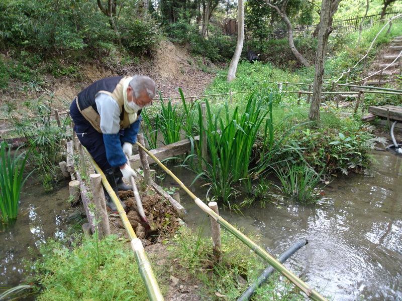 ビオトープの水漏れ補修とササユリ管理・・・うみべの森_c0108460_16393437.jpg