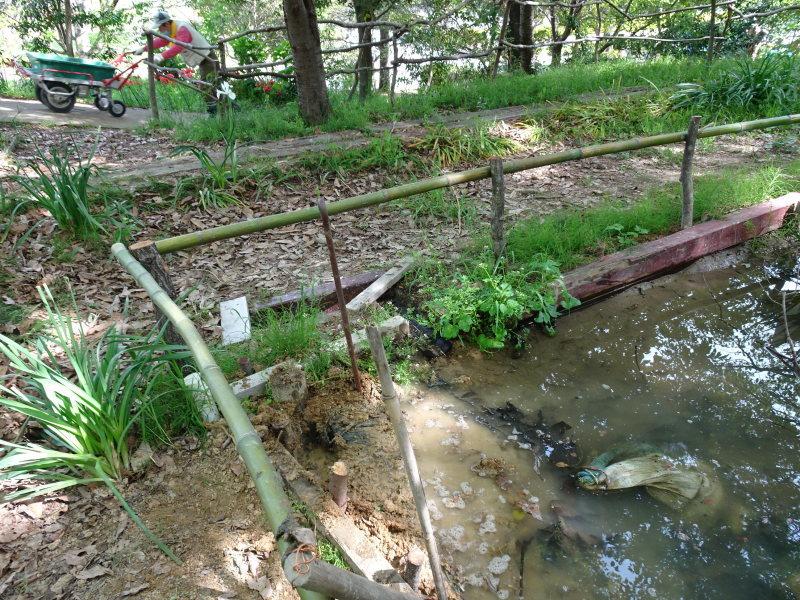 ビオトープの水漏れ補修とササユリ管理・・・うみべの森_c0108460_16403333.jpg