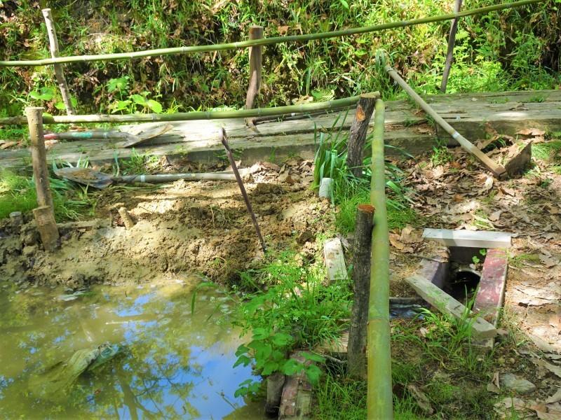 ビオトープの水漏れ補修とササユリ管理・・・うみべの森_c0108460_16543520.jpg