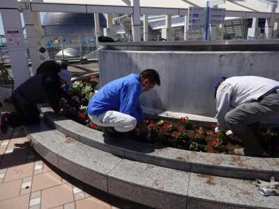 名古屋港水族館前花壇の植栽R3.4.7_d0338682_17474906.jpg