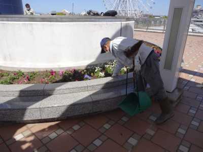 名古屋港水族館前花壇の植栽R3.4.7_d0338682_17543798.jpg