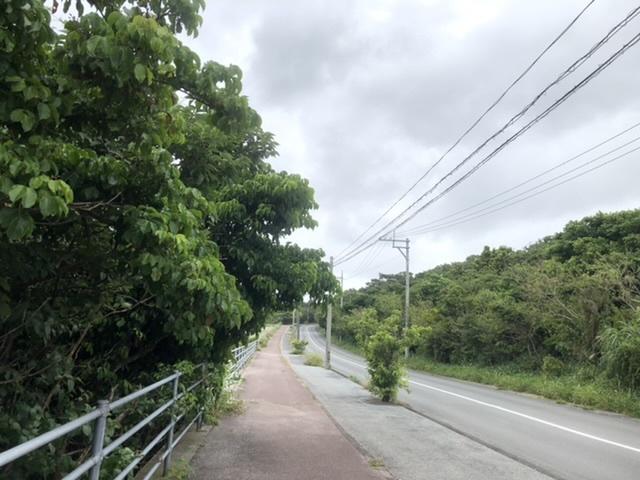 台風前の散歩道。_a0016090_20041745.jpeg