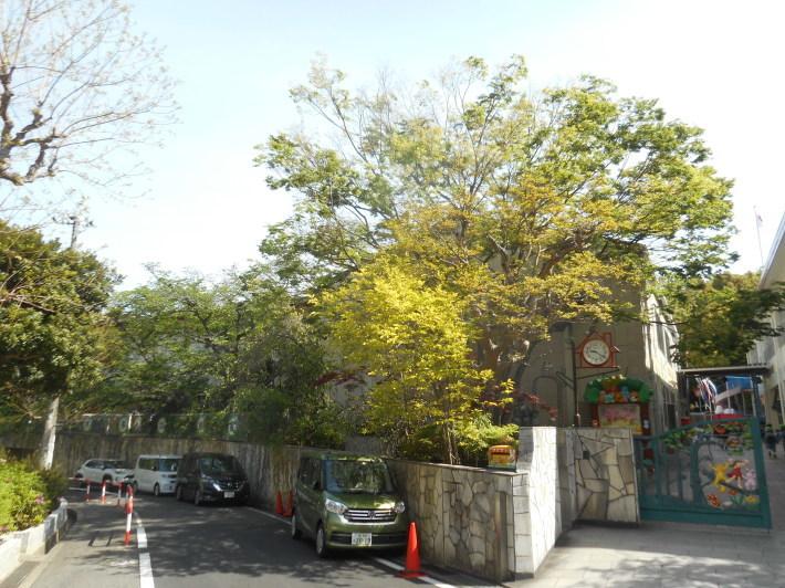 4月23日 美木多幼稚園の様子から_a0212624_13582641.jpg