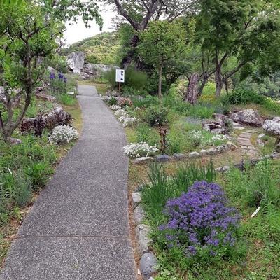今年も汐見ガーデンへ!_f0129726_20080669.jpg