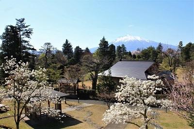 藤田記念庭園_2021.04.21撮影_d0131668_17521817.jpg