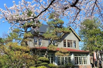 藤田記念庭園_2021.04.21撮影_d0131668_17544991.jpg