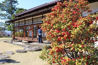 藤田記念庭園_2021.04.21撮影_d0131668_17555972.jpg