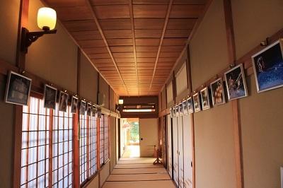藤田記念庭園_2021.04.21撮影_d0131668_17572894.jpg