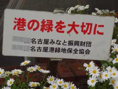 ガーデンふ頭総合案内所前花壇の植替えR3.4.12_d0338682_12385743.jpg