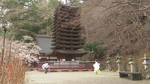 談山神社 おもろーい!_b0405445_07555866.jpg