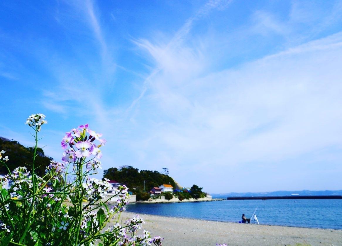 空と海とお花畑_d0253887_18212336.jpg