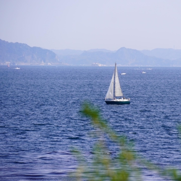 空と海とお花畑_d0253887_18212421.jpg