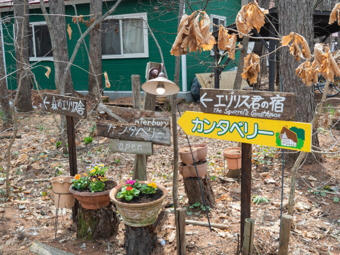 看板類を修理、花を植え、カタクリも咲き・・春らしく!_f0276498_14575608.jpg