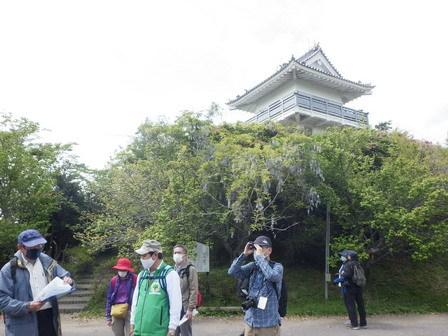 万木城の歴史と里山の自然観察_a0123836_17332120.jpg