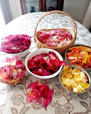 咲き終わったチューリップの再利用法♪_b0194861_10494218.jpg