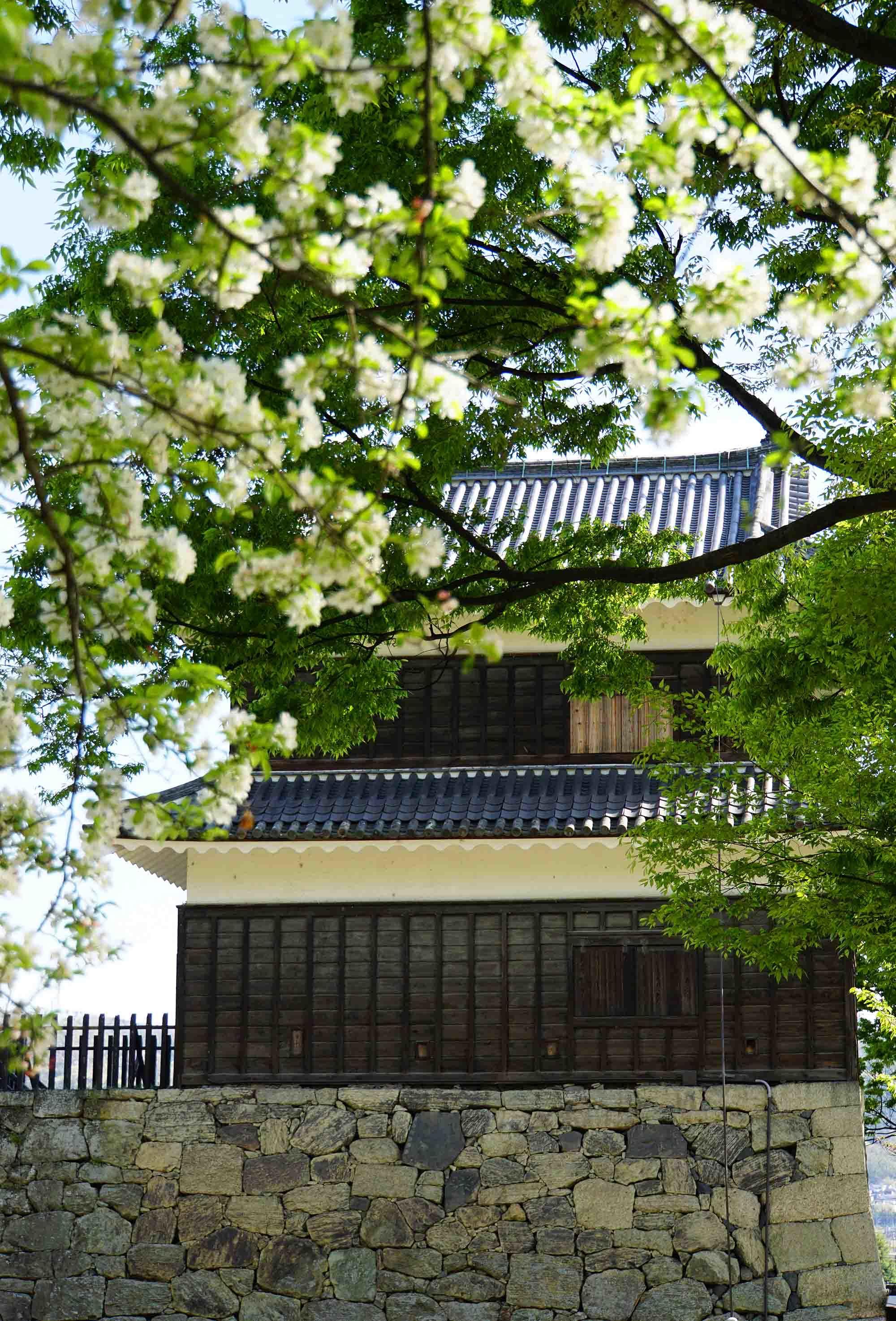 上田へ_f0153164_18515613.jpg