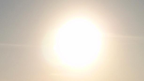 Spring Sun_e0209299_22121468.jpg