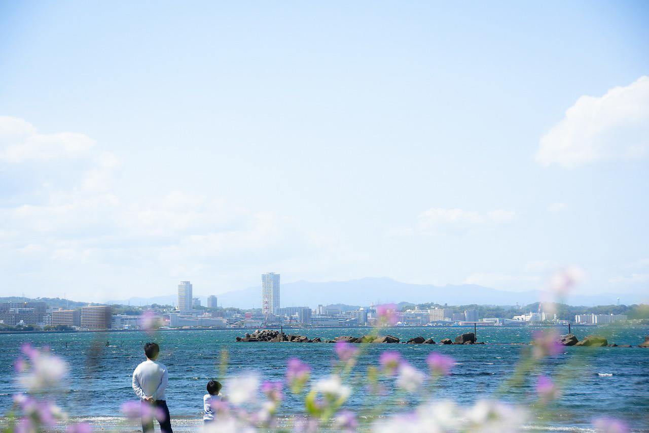 春色の走水_d0065116_20071055.jpg