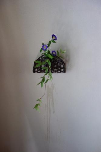 お庭のお花を楽しむ_a0197730_21064698.jpg