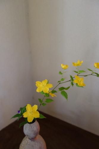 お庭のお花を楽しむ_a0197730_21250422.jpg