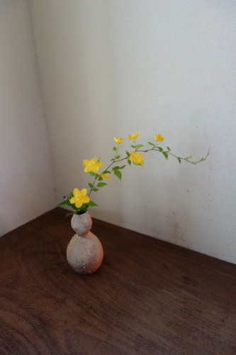 お庭のお花を楽しむ_a0197730_21260096.jpg
