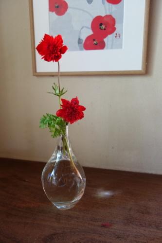 お庭のお花を楽しむ_a0197730_21493011.jpg