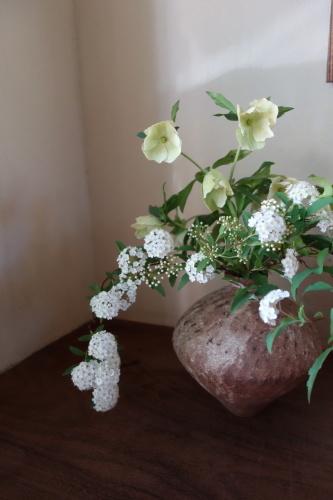 お庭のお花を楽しむ_a0197730_22043193.jpg
