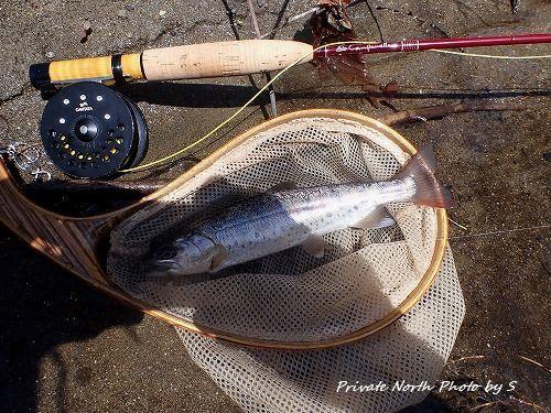 昨日の釣り_d0261148_19334670.jpg