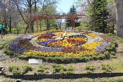 弘前城植物園の桜_2021.04.26撮影_d0131668_15515334.jpg