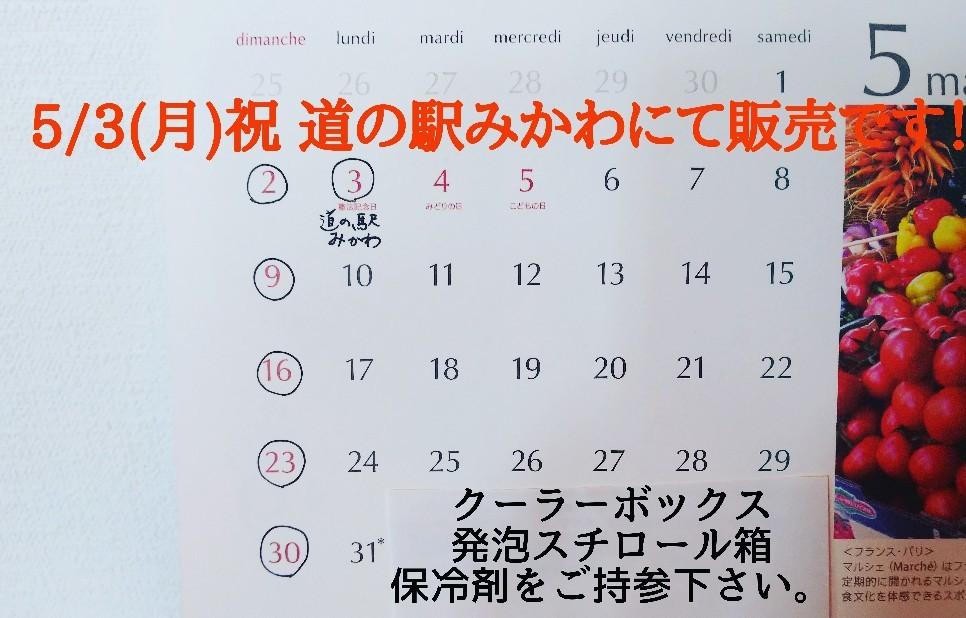 5/3(日)祝日、道の駅みかわにて、出張販売です!_e0226604_13151963.jpg