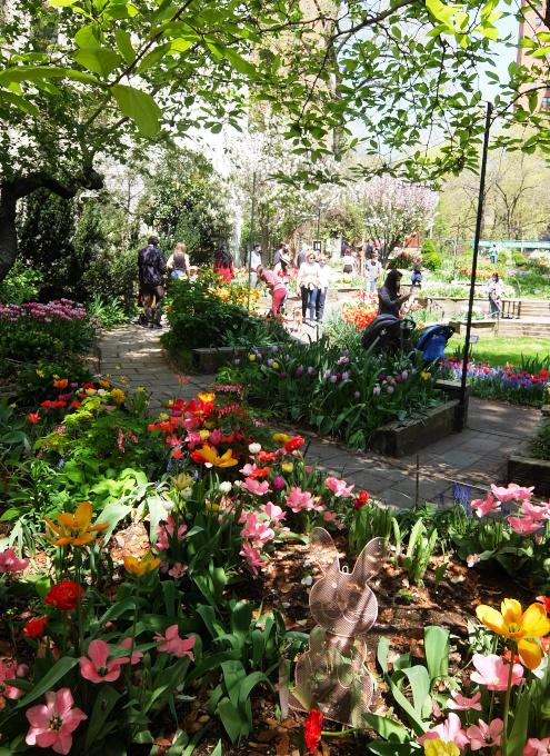 ウェスト・サイド・コミュニティ・ガーデンのチューリップ・フェスティバル_b0007805_03522448.jpg