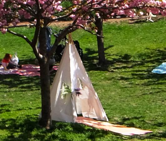 咲き始めました、セントラルパークの桜のトンネル_b0007805_19435961.jpg