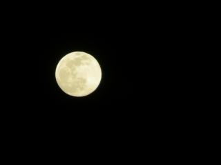 昨夜の月_e0030924_11003614.jpg