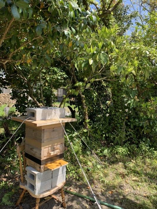 かっぱの養蜂。_d0180229_14483901.jpg