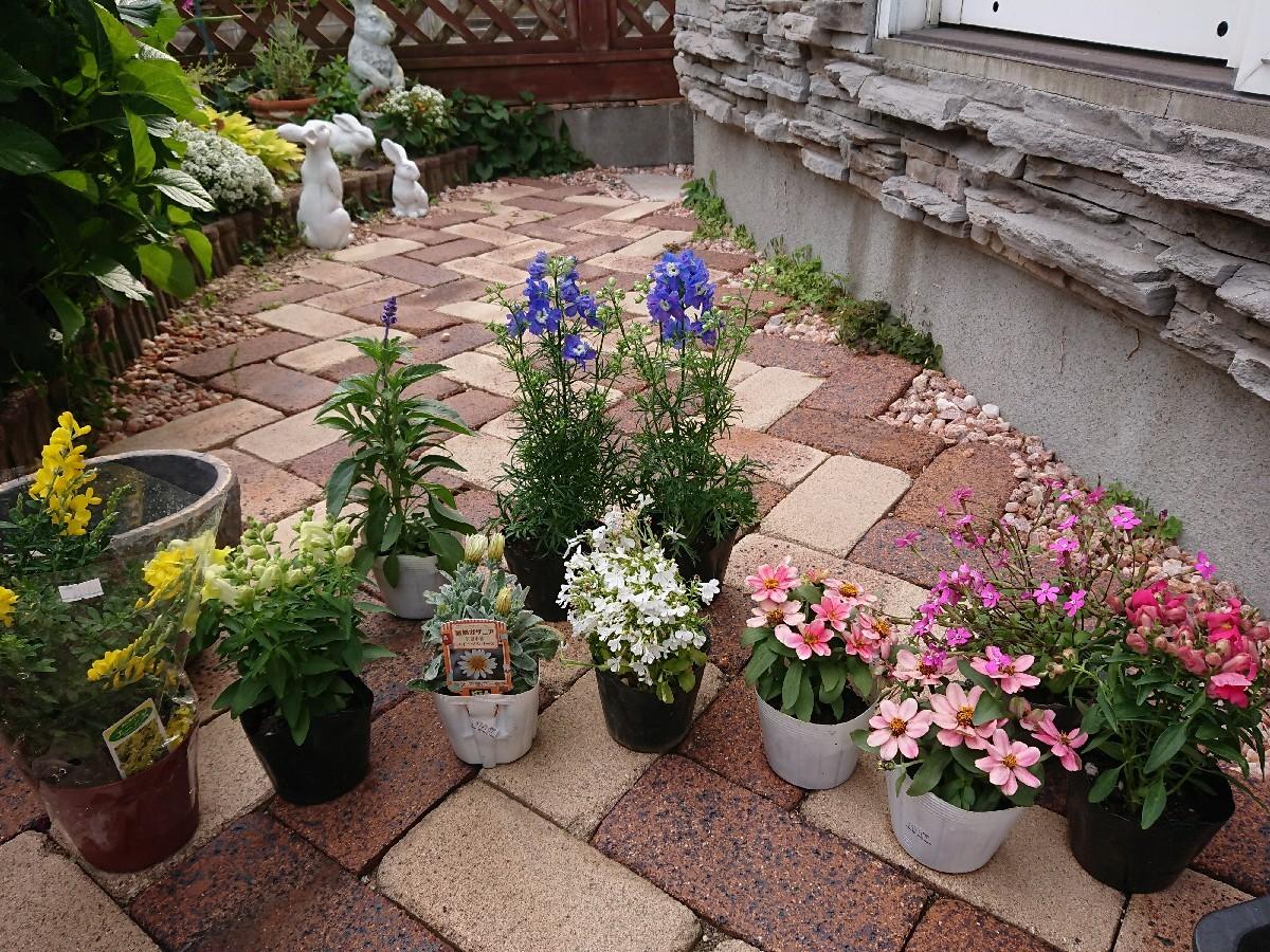 春の寄せ植え_f0323446_19272729.jpg