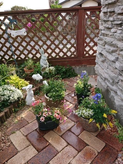 春の寄せ植え_f0323446_19272788.jpg