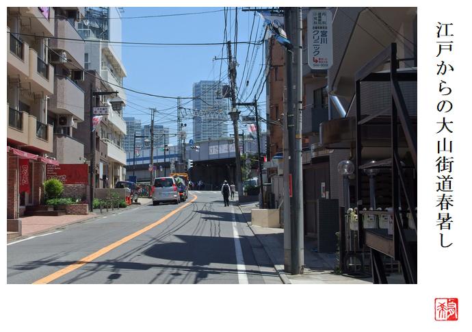 江戸からの大山街道春暑し_a0248481_21235271.jpg