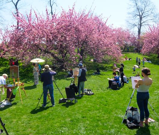 ニューヨークの野外アート・クラス、桜を背景に着物姿の女性を描く_b0007805_02554370.jpg