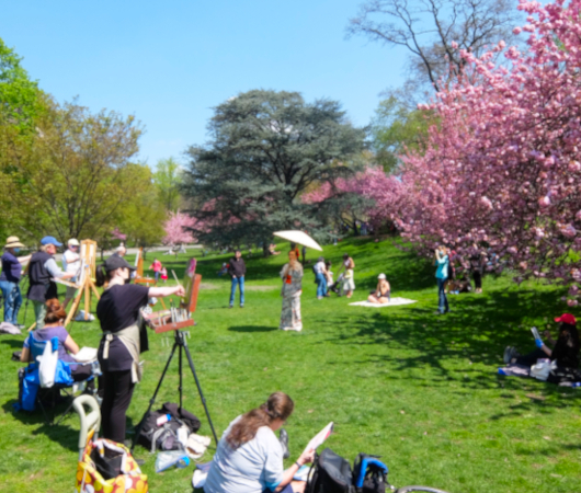 ニューヨークの野外アート・クラス、桜を背景に着物姿の女性を描く_b0007805_03150013.jpg