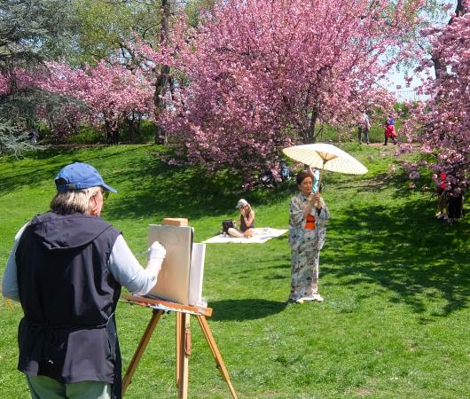 ニューヨークの野外アート・クラス、桜を背景に着物姿の女性を描く_b0007805_03170592.jpg