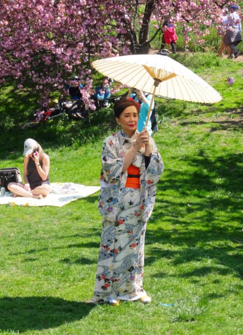 ニューヨークの野外アート・クラス、桜を背景に着物姿の女性を描く_b0007805_03215782.jpg
