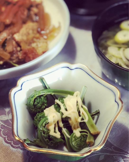 新緑と山菜の季節_d0182179_17593280.jpg