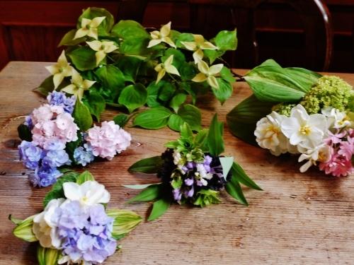 Oさんの お花です♡ 世界で一番かわいくて 賢い子??_e0167795_16242139.jpg