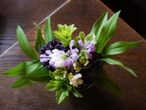 Oさんの お花です♡ 世界で一番かわいくて 賢い子??_e0167795_16261066.jpg