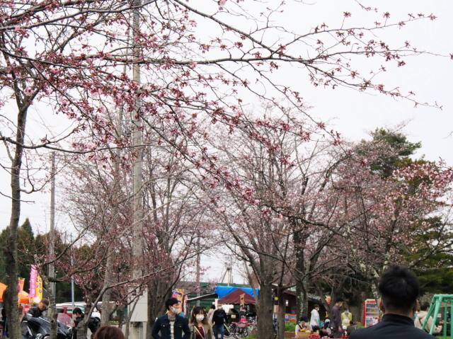 栗山公園_c0360399_21065115.jpg