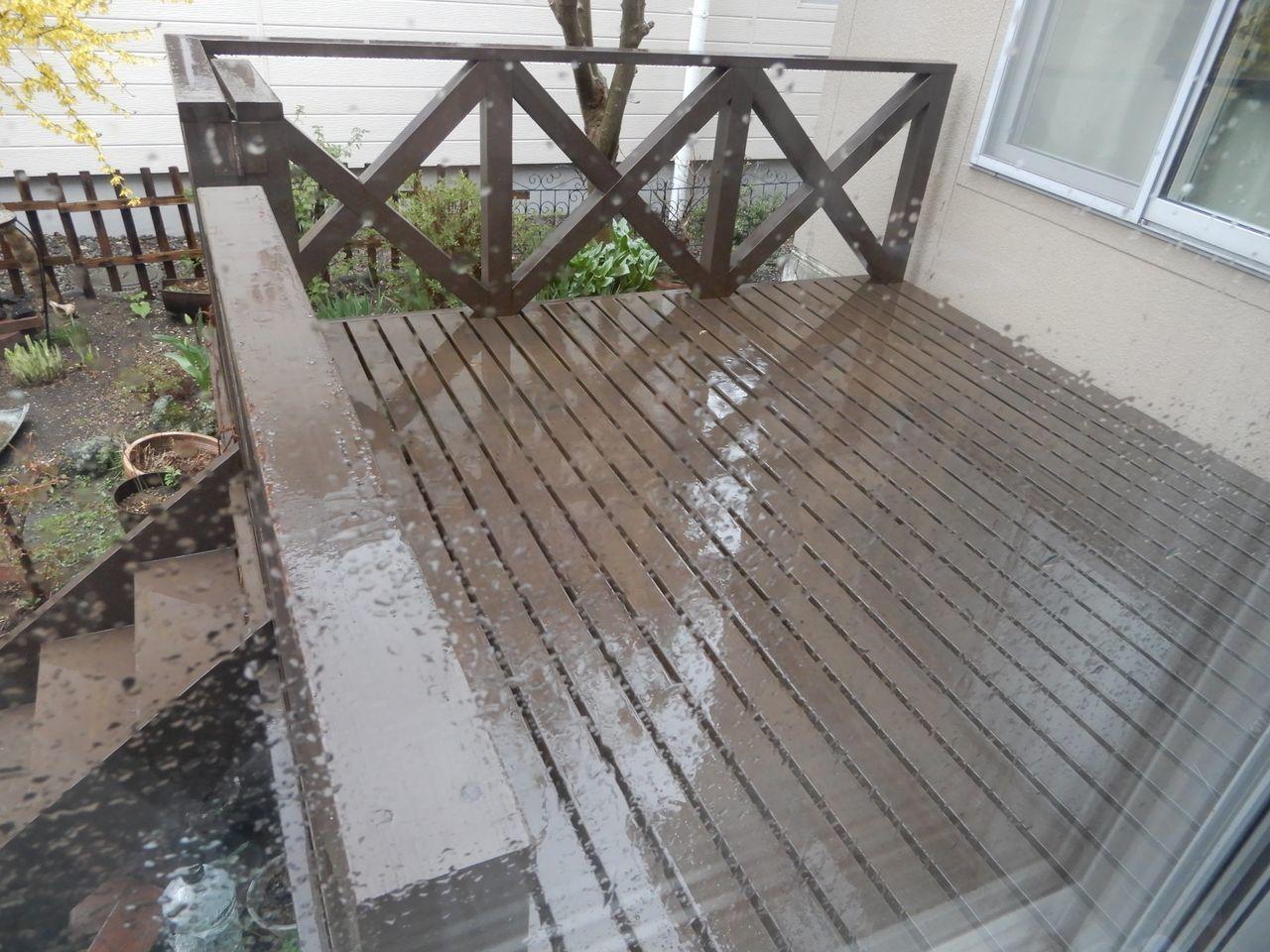 冷たい雨が降り続く_c0025115_21570535.jpg